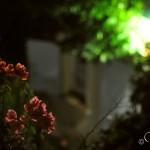 Уютное освещение вечером