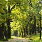 Парк Петршины